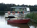 Miss Elizabeth Electric boat - geograph.org.uk - 1006122.jpg