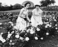 Miss P. Conrad and Miss C. McGuire in the rose garden at New Farm Park, Brisbane, 1954 (6983285043).jpg