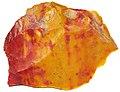 Mookaite (Windalia Radiolarite Formation, Lower Cretaceous; Western Australia) 18 (31972041437).jpg