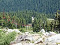 Mount Ashland ski run (LJ) - panoramio.jpg