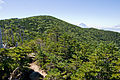 Mt.Kitaokusenjodake 03.jpg