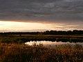 Mugaha Marsh.jpg