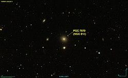 NGC 0811 SDSS (selon Seliigman).jpg