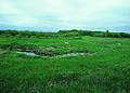 NRCSSD01012 - South Dakota (6043)(NRCS Photo Gallery).jpg
