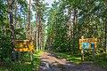 Nationalpark Vorpommersche Boddenlandschaft Darsswald 06.jpg