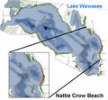 Nattie Crow Beach Lake Wawasee.png
