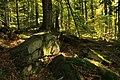 Nature reserve Ptaci stena in autumn 2011 (24).JPG