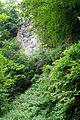 Naturschutzgebiet Saupark - Kleiner Deister - Felsformation der oberen Jura (Korallenoolith) (1).jpg