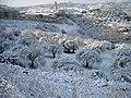 Neve a Codrongianos 2 - panoramio.jpg