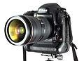 Nikon D4-Detail-5533.jpg