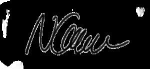 Nimet Baş - Image: Nimet Baş signature