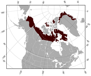 Northern Collared Lemming Dicrostonyx groenlandicus distribution map.png