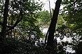 Ohiopyle State Park River Trail - panoramio (102).jpg