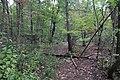 Ohiopyle State Park River Trail - panoramio (120).jpg