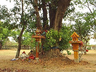 Spirit house - Old spirit houses are often left by sacred trees or at wats (Thailand)