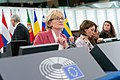 Opening of February plenary session with Vice-president McGuinness (49516809481).jpg