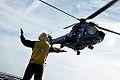 Operação Felino- Anfíbios desembarcam no litoral do Espírito Santo (9897539254).jpg