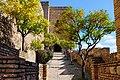 Orange trees in Alcazaba, Malaga, Spain (16316364420).jpg