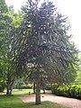 Orléans - parc floral (106).jpg