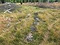 Orraryds gravfält (Raä-nr Nöbbele 3-1) treudd 6542.jpg
