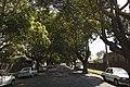 Osgood Ave, Marrickville - panoramio.jpg