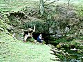Otter's Hole - geograph.org.uk - 347087.jpg