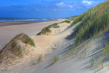 Photo des dunes au sud du Touquet-Paris-Plage
