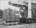 PSM V84 D314 Truck loaded with weights.jpg