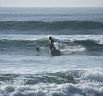Paddle surfing 10 2008.jpg