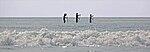 Paddle surfing 3 2007.jpg