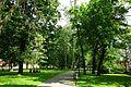 ParkStrzelecki-WidokNaPółnoc-POL, Kraków.jpg