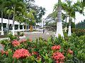 Parquelineal1.jpg