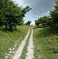 Path near Cherhill 02.jpg