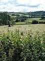 Paysage à Meulot (Saint-André-en-Morvan, Nièvre, Fr).JPG