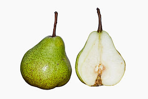 Pear - Pear fruit cross section