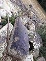Pedra com furo.jpg