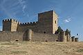 Pedraza Castillo 340.jpg
