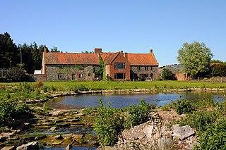 Pensthorpe Natural Park nature reserve in the United Kingdom