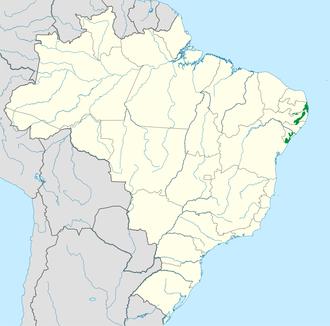 Pernambuco interior forests - Image: Pernambuco interior forests WWF