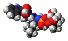 Space-filling model of the phosphoramidon molecule