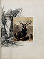 "Photograph of Landseer's ""Monarch of the Glen"" with a pen an Wellcome V0020867.jpg"