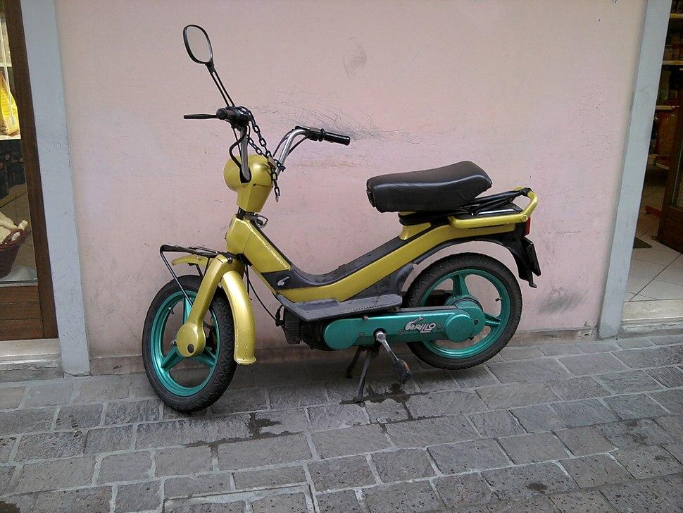Piaggio Grillo a Rovigo
