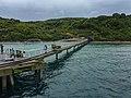 Pier at Tiri Tiri Island - New ZealandIMG 5543 (40391756962).jpg