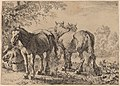 Pieter van Laer, Three Horses in a Field, 1636, NGA 70348.jpg