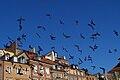Pigeons on the Run - panoramio.jpg