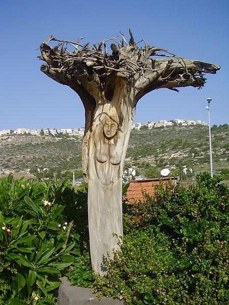 עץ מגולף במרכז קסטרא בחיפה