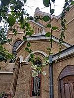 PikiWiki Israel 53187 church of immanuel.jpg