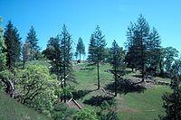 Pine Ridge Coe SP.jpg