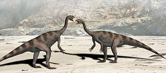 1837 in paleontology - Two Plateosaurus.