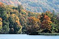Plitvice Lakes National Park - Lake and forest.jpg